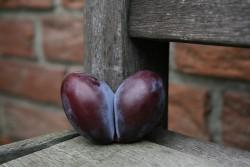 Herzpflaume klein